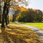 die lichtfänger Herbst