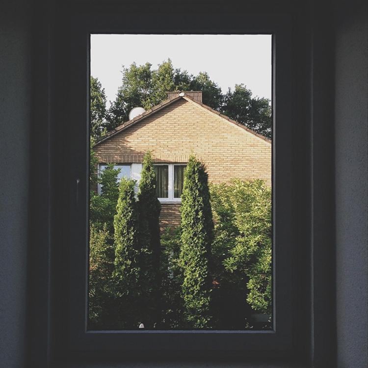 lf-Fenster-02