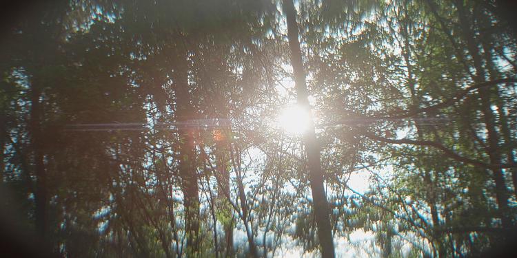 die lichtfänger Anamorph Filmen