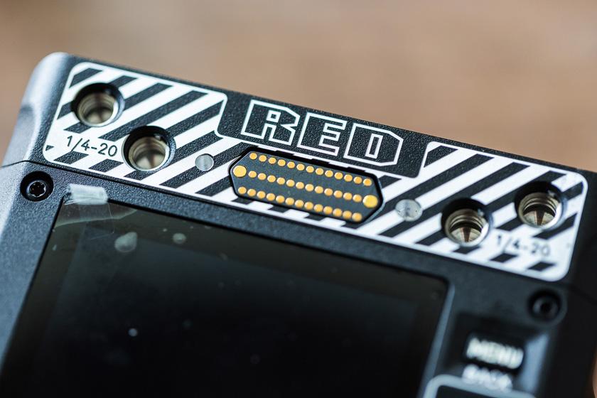 Red Komodo Pins